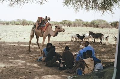 Mali pastoralists, Aioun, Mauritania, May 2004